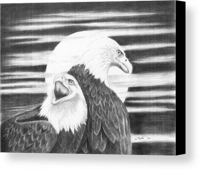Bird Canvas Print featuring the drawing Eagles by Lawrence Tripoli