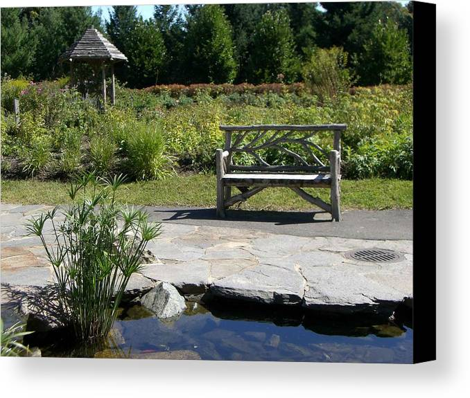 Bench Canvas Print featuring the photograph Elm Bank - Bench by Nancy Ferrier