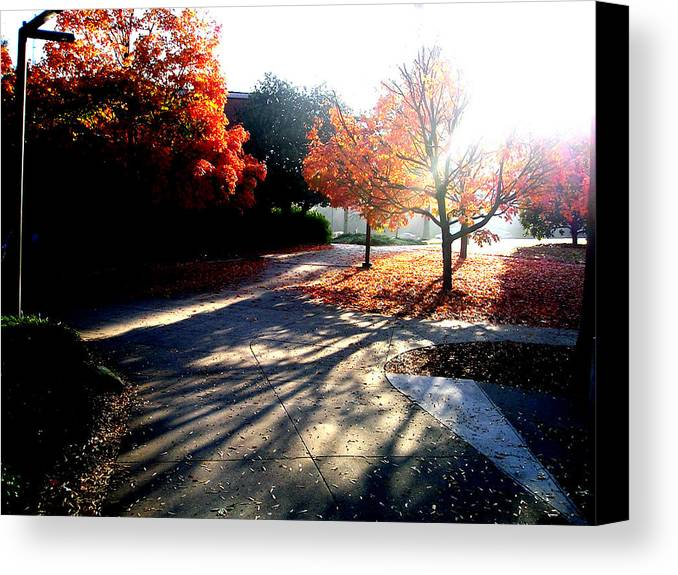 Autumn Canvas Print featuring the photograph Fall Morning by Stephanie Gobler
