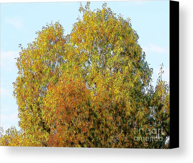 Tree Autumn Color Photo Photograph Green Red Orange Craig Walters Trees Fall Sky Canvas Print featuring the digital art Fall Tree by Craig Walters