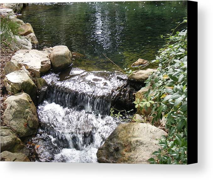 Water Canvas Print featuring the photograph Falling by James and Vickie Rankin