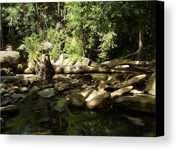 Falls Park Canvas Print featuring the photograph Falls Park by Flavia Westerwelle