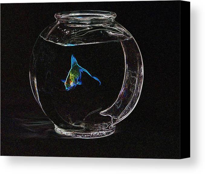 Fish Canvas Print featuring the photograph Fishbowl by Tim Allen