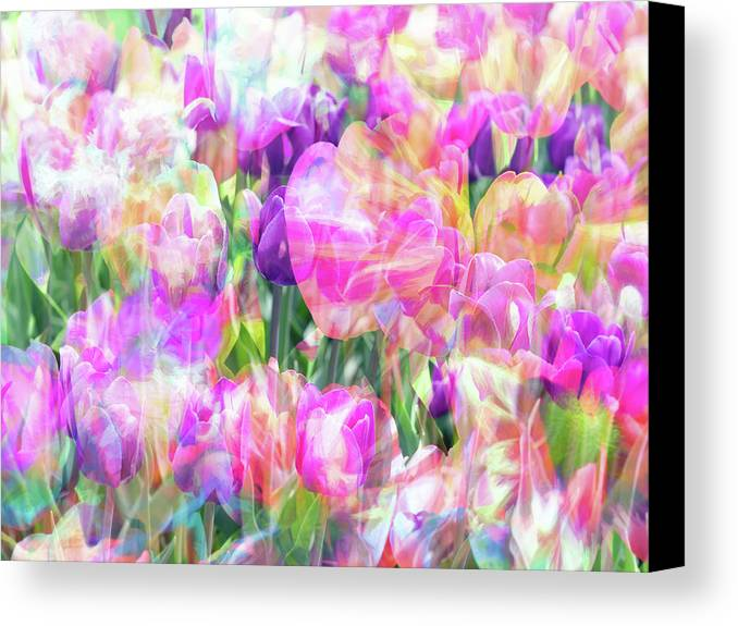Flowers Canvas Print featuring the photograph Floral Art Cx by Tina Baxter