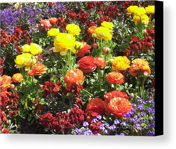 Flower Canvas Print featuring the photograph Flowers by Sascha Meyer