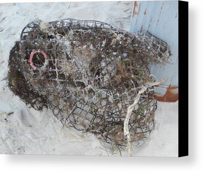Artistry Canvas Print featuring the photograph Full Metal Fish by Becky Haines