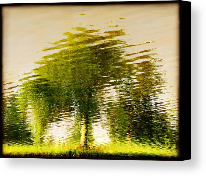 Abstract Canvas Print featuring the photograph Gentle Sun by Dana DiPasquale