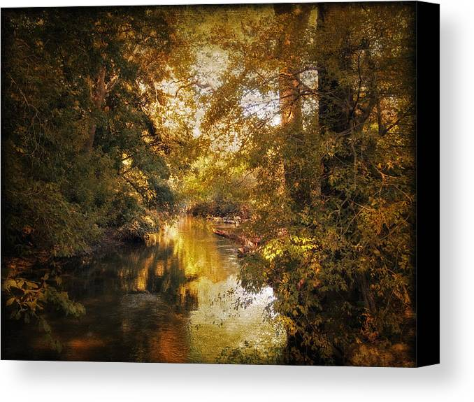 Nature Canvas Print featuring the photograph Gilded by Jessica Jenney