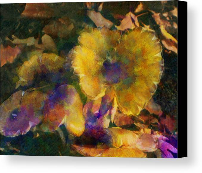 Mushrooms Canvas Print featuring the digital art Golden Mushrooms by Carolyn Saine