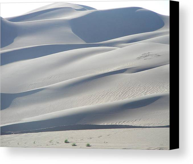 Nature Canvas Print featuring the photograph Great Sand Dunes by Peter McIntosh