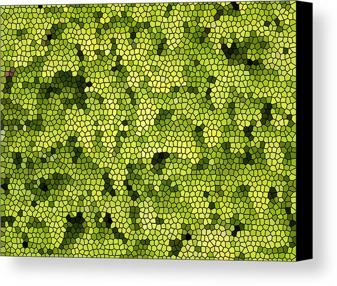 Floral Canvas Print featuring the digital art Green Curtain by James Granberry