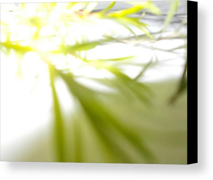 Creative Canvas Print featuring the photograph Green Light by Prerana Rana