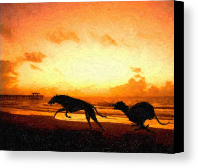 Greyhound Canvas Print featuring the painting Greyhounds On Beach by Michael Tompsett