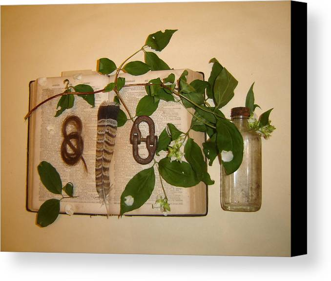 Still Life Canvas Print featuring the photograph Hair Lock To June Flowering by Dean Corbin