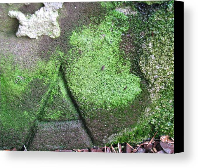 Stone Carving Canvas Print featuring the photograph Hidden Meaning by Belinda Consten