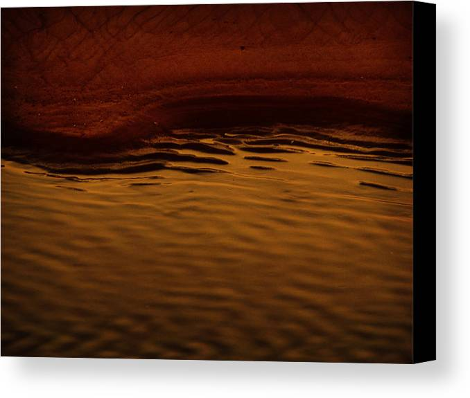 Abstract Canvas Print featuring the photograph I Want To Wake Up Where You Are by Dana DiPasquale