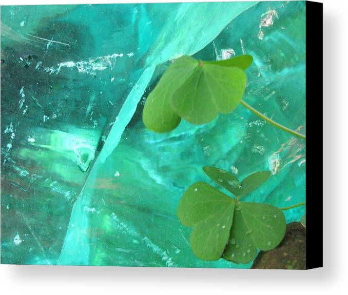 Crystal Canvas Print featuring the photograph Ice Stone by Belinda Consten