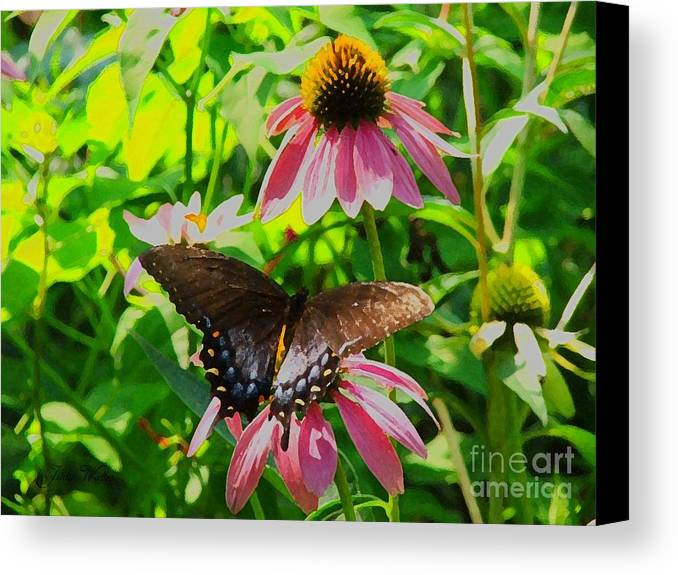 Butterfly Canvas Print featuring the photograph In The Upper Garden - One by Judy Waller