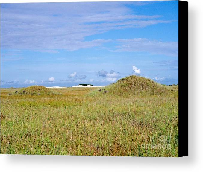 Island Canvas Print featuring the photograph Island Beauty by Gary Richards