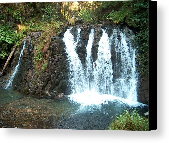 Waterfall Canvas Print featuring the photograph Juneau Waterfall by Janet Hall