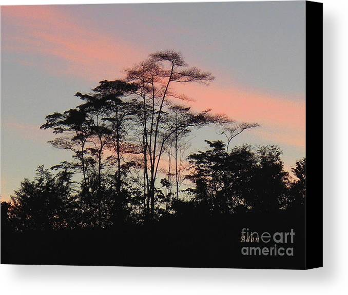 Silhouettes Canvas Print featuring the photograph la Casita Playa Hermosa Puntarenas Costa Rica - Sunset B One by Felipe Adan Lerma