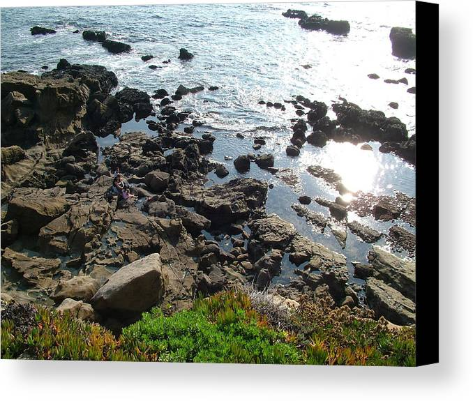 Beach Canvas Print featuring the photograph Land And Sea by John Loyd Rushing
