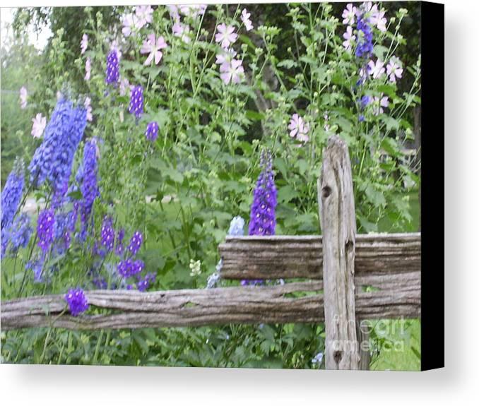 Purplr Flowers Canvas Print featuring the photograph Leaning On The Fence by Deborah Selib-Haig DMacq