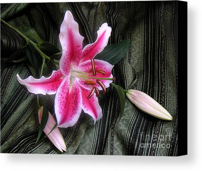 Nature Canvas Print featuring the photograph Lily Stem On Green Brocade by Lucyna A M Green
