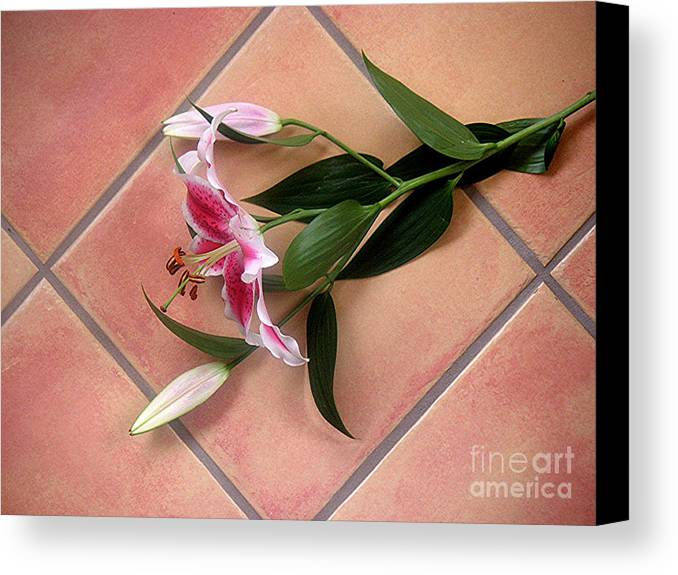 Nature Canvas Print featuring the photograph Lily Stem On Tile by Lucyna A M Green