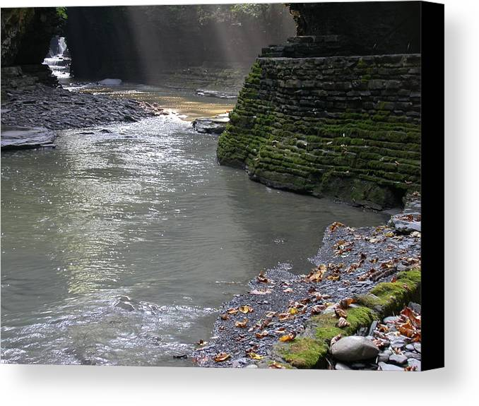 Watkins Glen Canvas Print featuring the photograph Little Ray Of Sunshine by Linda Murphy