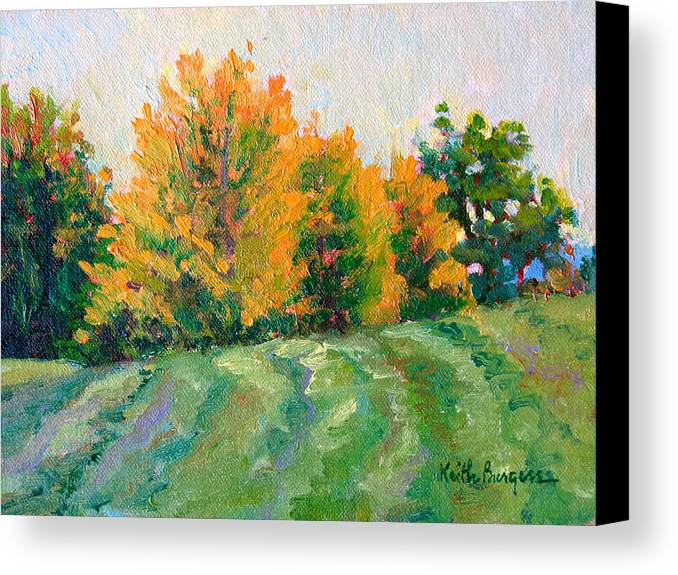 Impressionism Canvas Print featuring the painting Maple Grove by Keith Burgess