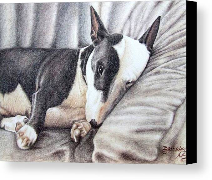 Dog Canvas Print featuring the drawing Mini Bulldog Terrier by Nicole Zeug