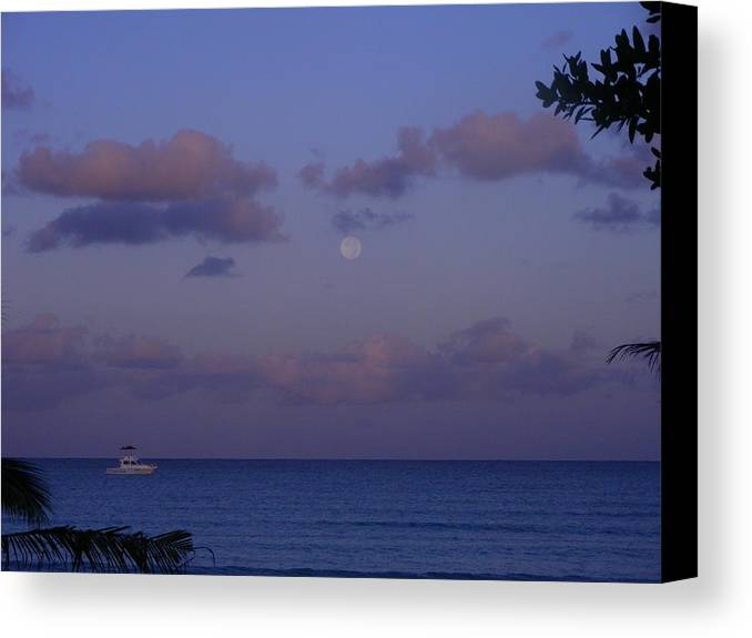 Nature Canvas Print featuring the photograph Morning Moon by Peter McIntosh