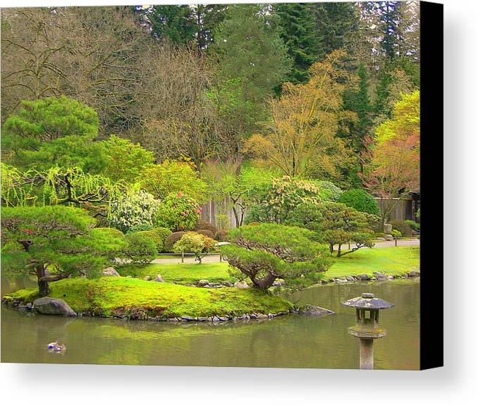 Japanese Canvas Print featuring the photograph Mossy Garden by Maro Kentros