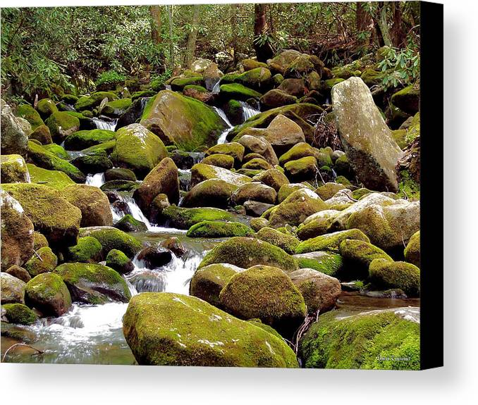 Nature Canvas Print featuring the photograph Mountain Stream by Johann Todesengel