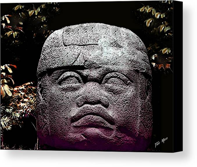 Aztec Canvas Print featuring the photograph Mr Stone Head by Tray Mead