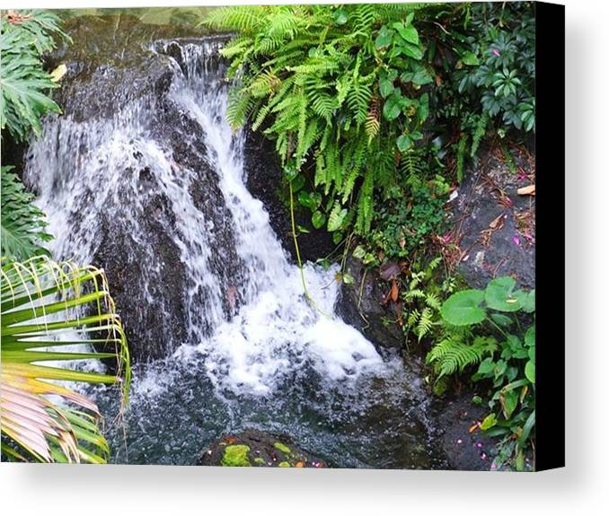 Water Canvas Print featuring the photograph Natural Beauty by Rana Adamchick
