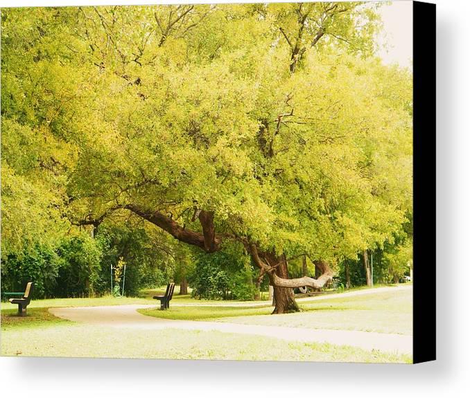 Never Change. Canvas Print featuring the photograph Nature Beauty. by Nereida Slesarchik Cedeno Wilcoxon