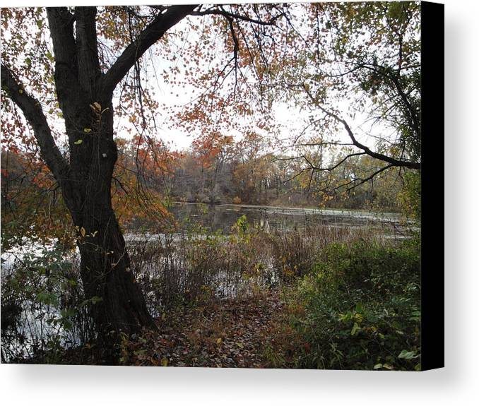 Autumn Landscape Canvas Print featuring the photograph Nature's Expression-13 by Leonard Holland