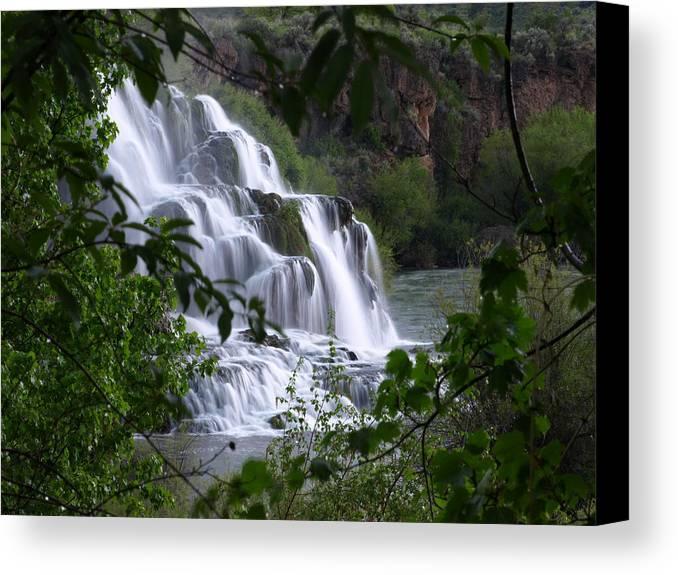 Water Canvas Print featuring the photograph Nature's Framed Waterfall by DeeLon Merritt