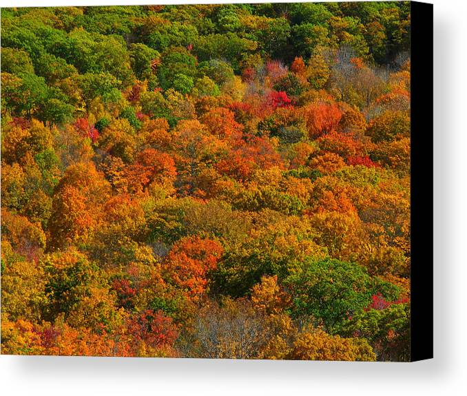 Landscape Canvas Print featuring the photograph New England Fall Foliage Peak by Juergen Roth