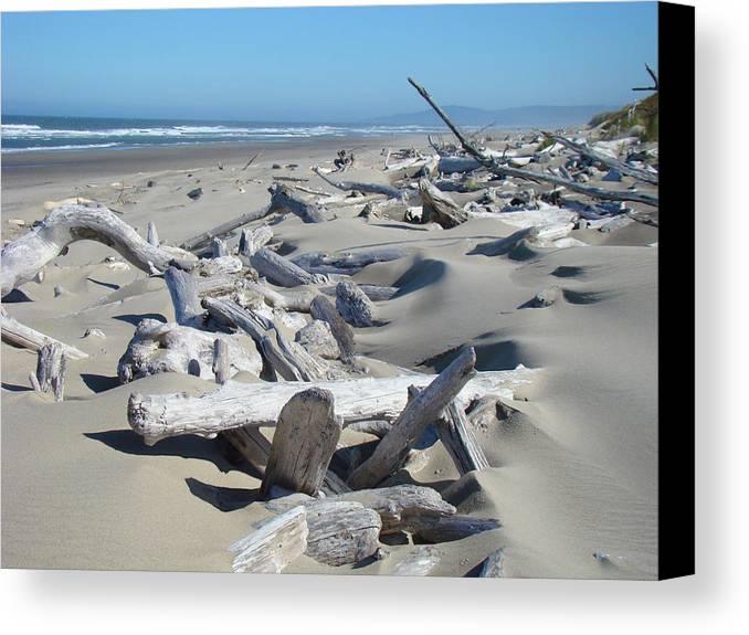 Driftwood Canvas Print featuring the photograph Ocean Coastal Art Prints Driftwood Beach by Baslee Troutman
