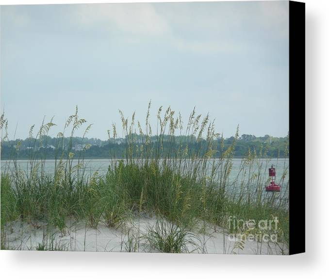 Scenery Canvas Print featuring the photograph Oceanview Through Seaoats by Barb Montanye Meseroll