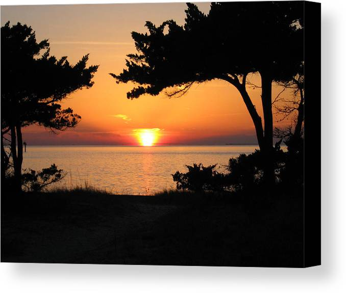 Ocracoke Canvas Print featuring the photograph Ocracoke Island Winter Sunset by Wayne Potrafka