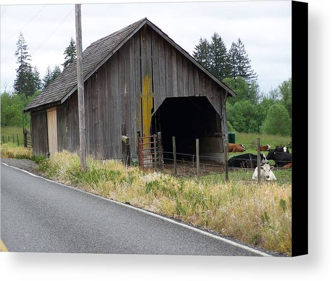 Barn Canvas Print featuring the photograph Old Cow Barn Washington State by Laurie Kidd