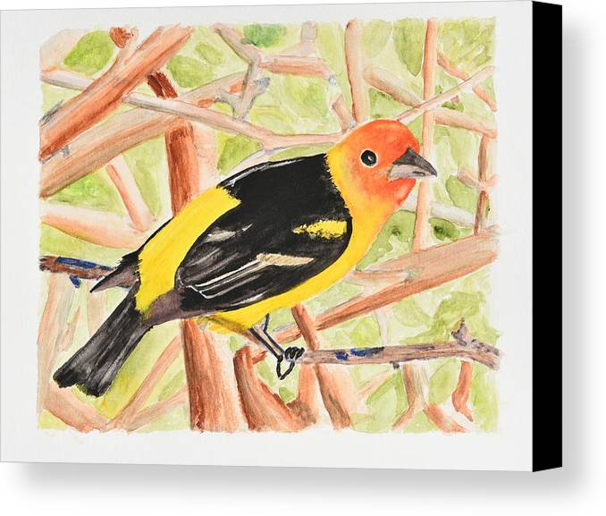 Linda Brody Canvas Print featuring the painting Orange Tanager by Linda Brody