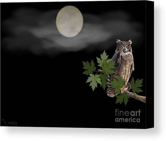 Owl Canvas Print featuring the digital art Owl by Terri Mills