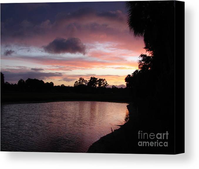 Pink Canvas Print featuring the photograph Pink by Priscilla Richardson