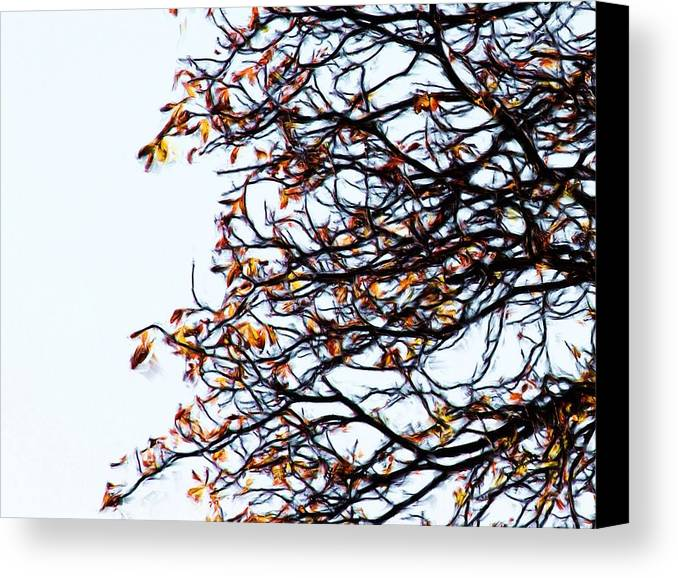 Praha Canvas Print featuring the painting Praha Tangled Tree by Shawn Wallwork