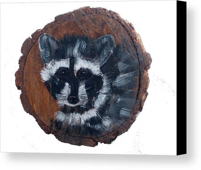 Racoon Canvas Print featuring the painting Raccoon by Mikki Alhart